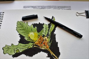 Choosing the Right Watercolor Paper (Quality, Content, Weight, Textures, Color, Forms)