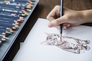 Pencil Shading Tips and Techniques for Beginners